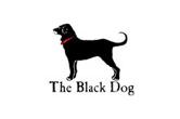 _0022_theblackdog